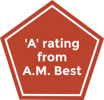The AM Best rating for the Hudson Insurance Group.